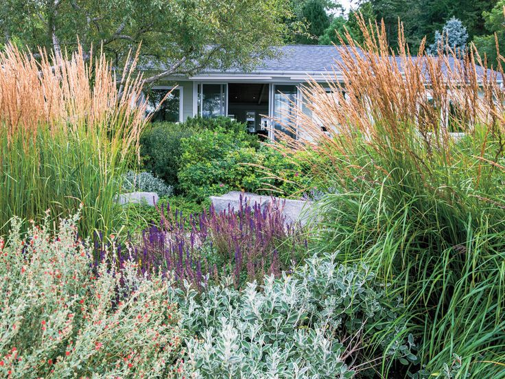 How To Design a Waterfront Garden - Sunset