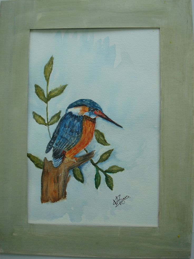 kingfisher paintedme 17 september  kingfisher