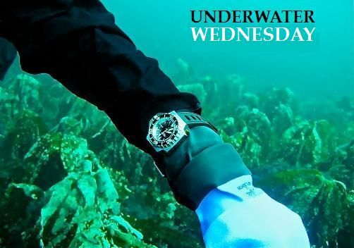If you have an avid diver in your family (and you're feeling particularly generous) there are some fantastic men's luxury watches that are tailor made for those with a love of diving and the deep blue sea.    Some of the world's biggest watchmakers have collections dedicated to those with an affinity for diving and it's important to have some of the best gear when it comes to diving – so, with that in mind, let's take a look at 4 of the best luxury diving watches for men: