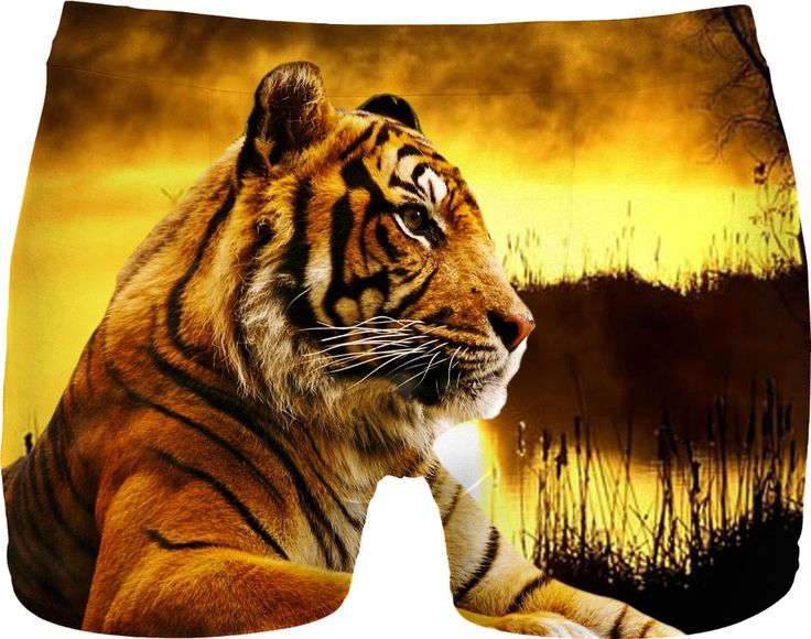 Check out my new product https://www.rageon.com/products/tiger-and-sunset-men-underwear on RageOn!