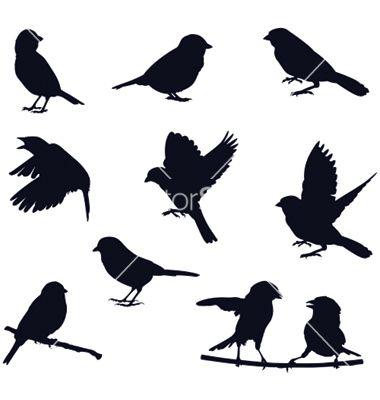 Bird silhouettes vector | STENCIL & STAMP & PRINTS ...