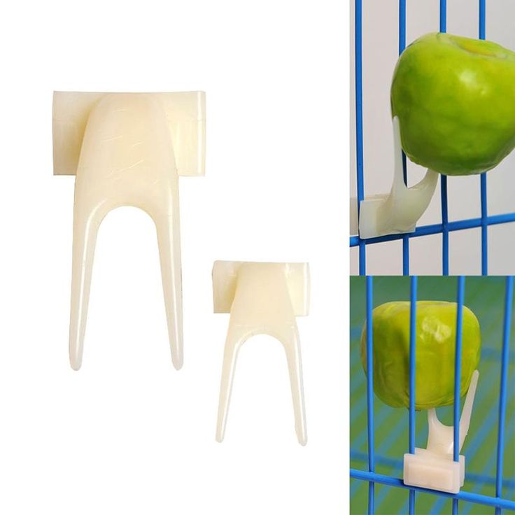 3.2*1.6Cm Plastic Bird Feeders Fruit Food Fork Install Cage Accessories Parrot Appliance Pigeon Supplies Feeder Pet Device