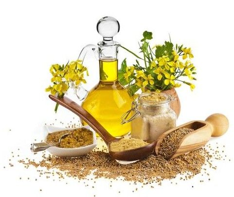 Benefits of Mustard Oil on Natural Hair
