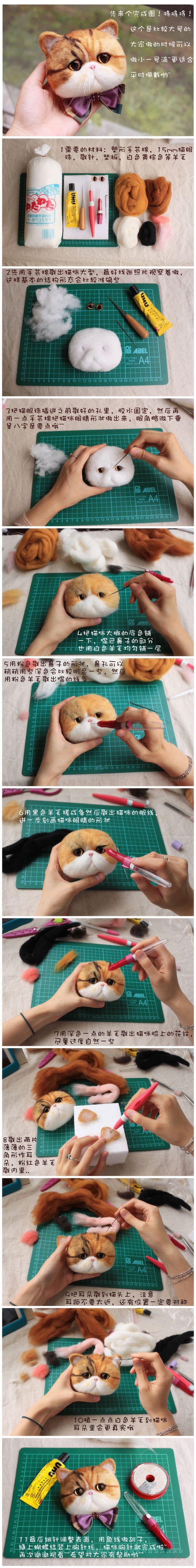 大脸猫眯教程~~