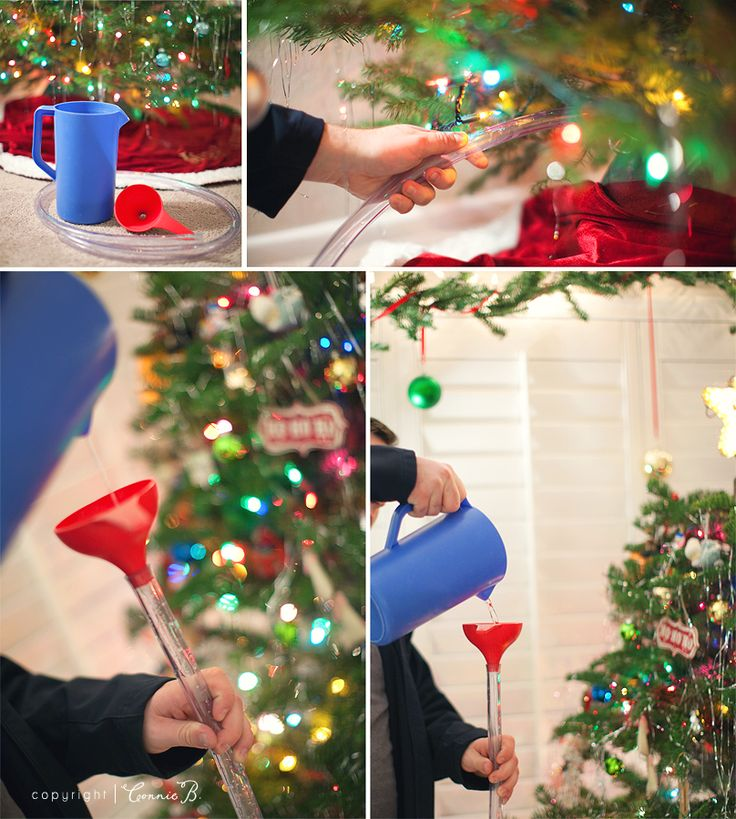 DIY Christmas tree watering system. It's so easy now!  I've been doing it the hard way my whole life.