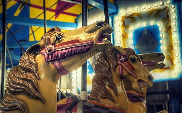 I love the expression on this carousel horse's face. Taken at the St. Dominic Days Festival in Brookfield, WI.  www.scottnorrisphotography.com