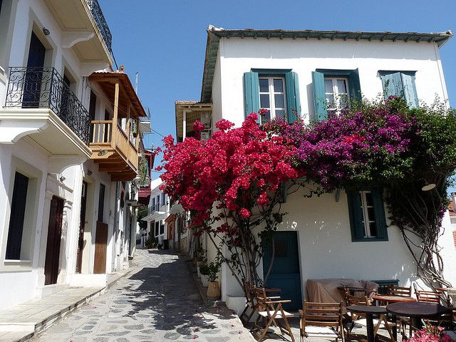 Bougainvillea Skopelos, Greece