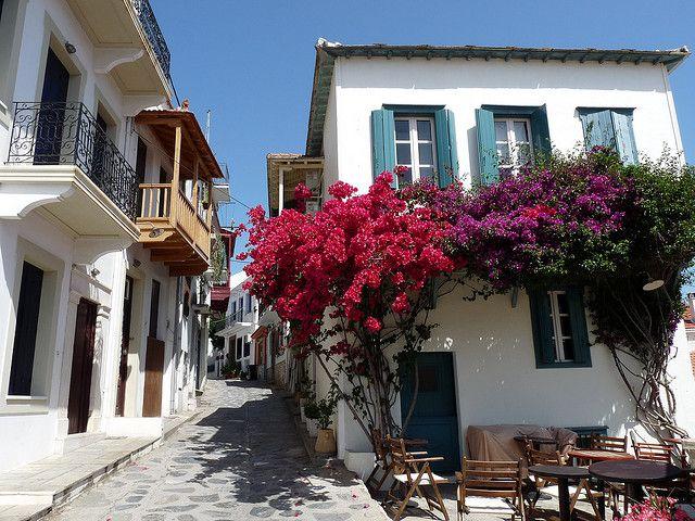 Bougainvillea Skopelos, Greece