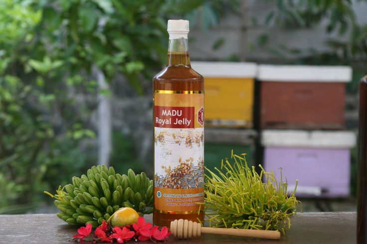 distributor madu royal jelly asli ,  madu reseller royal jelly asli ,  agen madu royal jelly asli , grosir madu royal jelly asli , manfaat madu royal jelly , aneka madu royal jelly , bermacam macam madu royal jelly ,