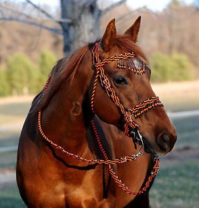 Paracord horse bridle braided bling bridle reins for Paracord horse bridle