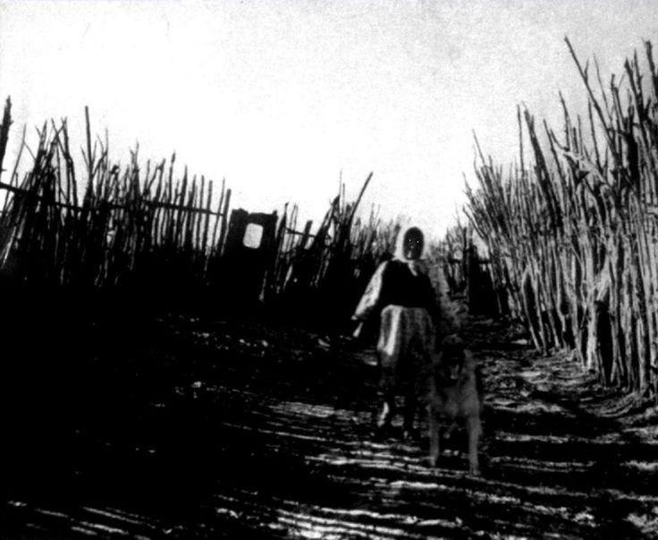 """Charlie Noonan fue un folclorista estadounidense que incursionó en lo más profundo de los llanos de Oklahoma en busca de una anciana a quien los lugareños consideraban una """"criatura sobrenatural"""", solitaria y siempre en compañía de un enorme perro pastor alemán. El hombre fue en su búsqueda y nunca se lo volvió a ver. Una década más tarde, su cámara llegó hasta su esposa; el rollo fue revelado y sólo se encontró esta foto, la última tomada por el infortunado folclorista Charlie Noonan."""