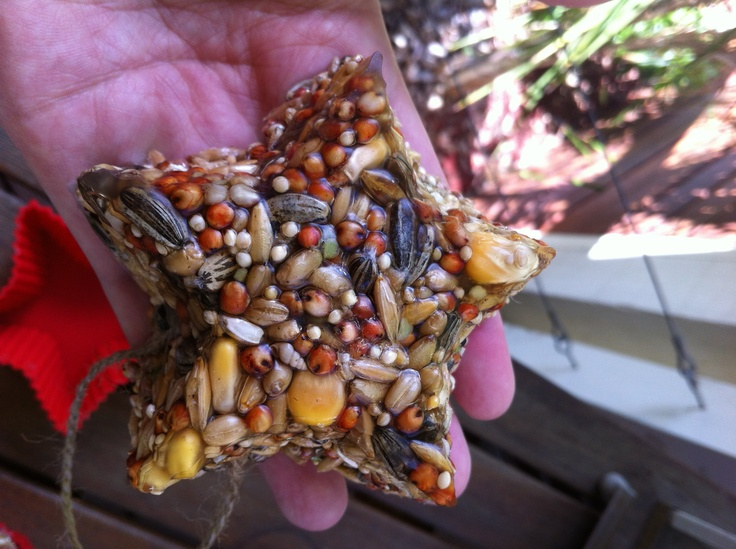 Beautiful bird seed feeder. Easy to make. Great way to attract birds to your garden.