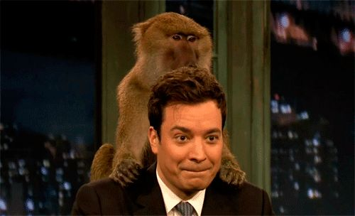 His face when he had a monkey on his back. | Community Post: 24 Moments That Prove Jimmy Fallon Is Perfect