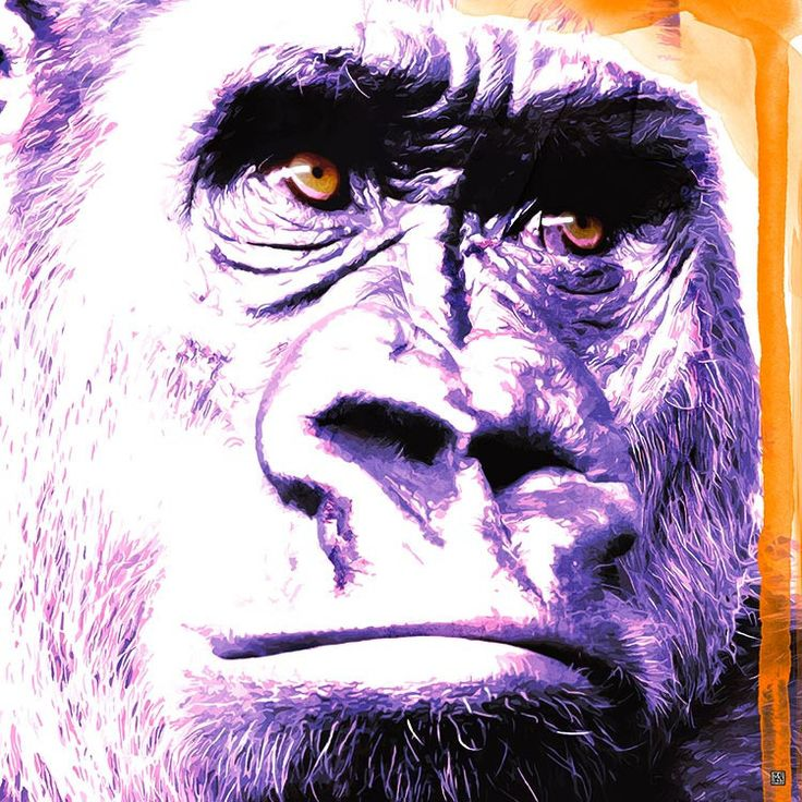 Rilla in the Purp - Stretched Canvas Artwork & Ready to Hang | Mokosozo