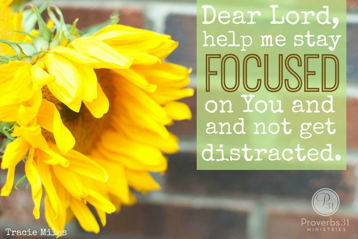 Dear Lord, Help me stay focused on You, and not get distracted or frustrated this season. In Jesus' Name, Amen. {Tracie Miles}