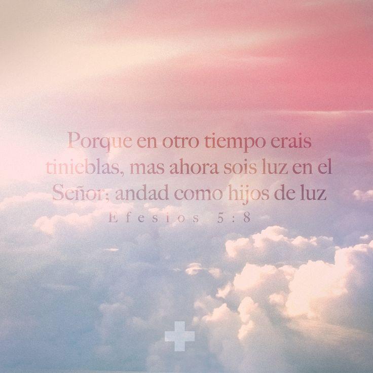 DIA #6 - Efesios 5:8  #devocionalaviva  >>>>> www.devocionalaviva.com