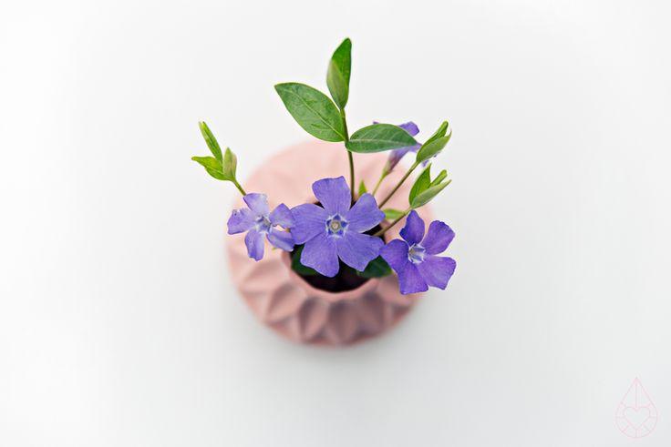 Lenneke Wispelwey #flora #flowers pinterest.com/nasti