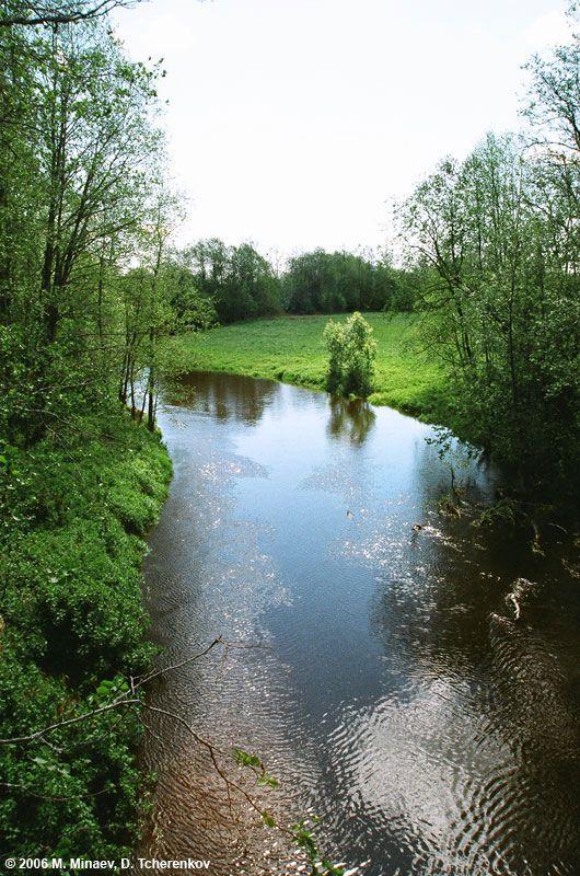 Вид с моста на реку Авлога вверх по течению.