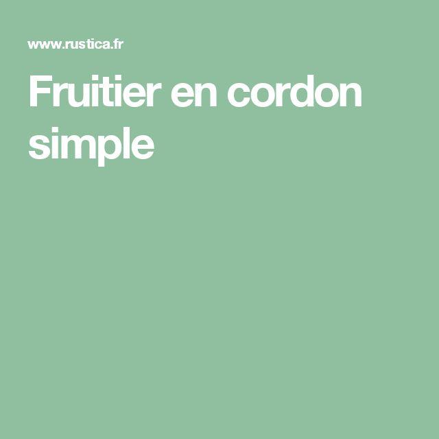 Fruitier en cordon simple