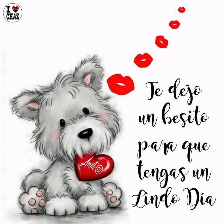 Pin By Carmen Obando On Buen Dia Funny Good Morning Memes Good Morning Quotes For Him Good Morning Quotes