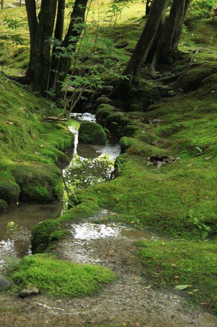 Moss river