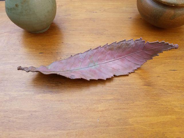 Medium Sweet Chesnut Leaf  £22.00