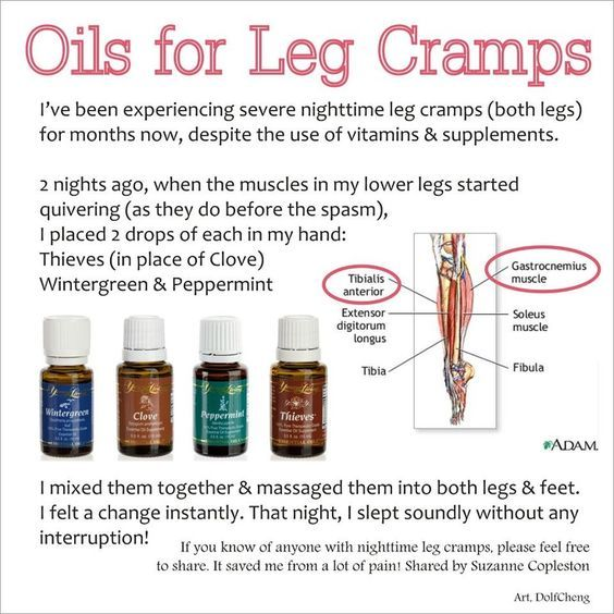 Premium Starter Kit | Wintergreen Essential Oil, Young Living Clove and Leg…