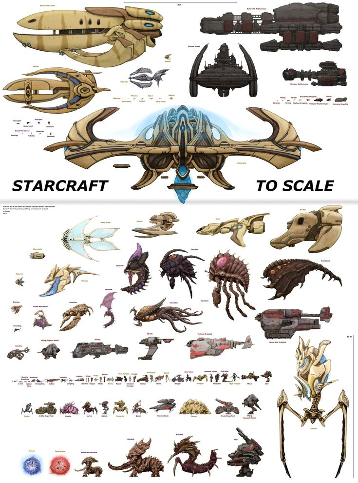 Starcraft units to scale