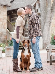 winter engagement photos with dogs - Google Search