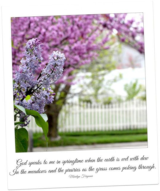 Inspirational quote & springtime photos of flowering Redbud tree, lilac, tulips, violets with a poem, God Speaks to me in Springtime. A small sparrow in the branches reminds me God takes notice & His eye is on us both. Encouraging words.
