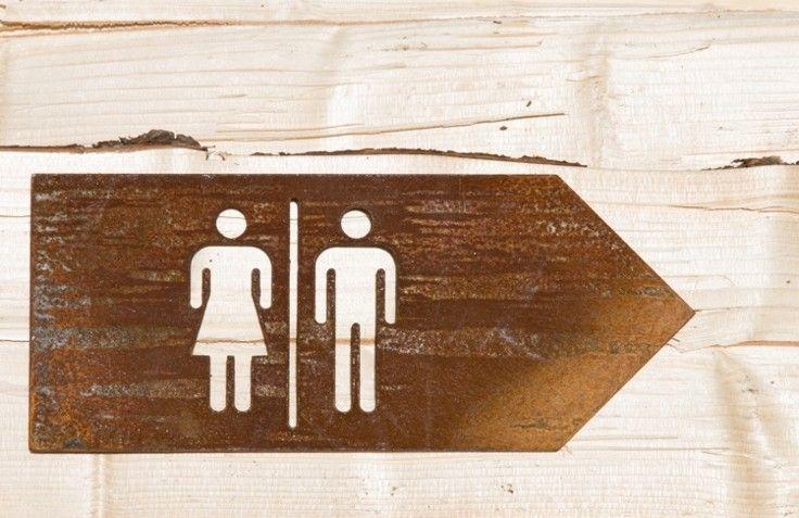 """Zdjęcie tabliczki """"toalety"""" ze stali Corten ( zdjęcie wykonane po dwóch miesiącach patynowania )."""