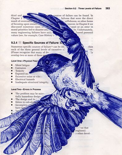 Bird drawings: blueinkpen_bluebird by PS pics, via Flickr
