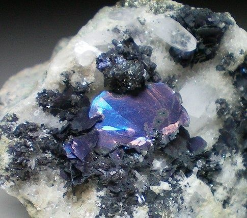 Covelliteleonard mine montana colorful gems rocks for What are the minerals found in soil