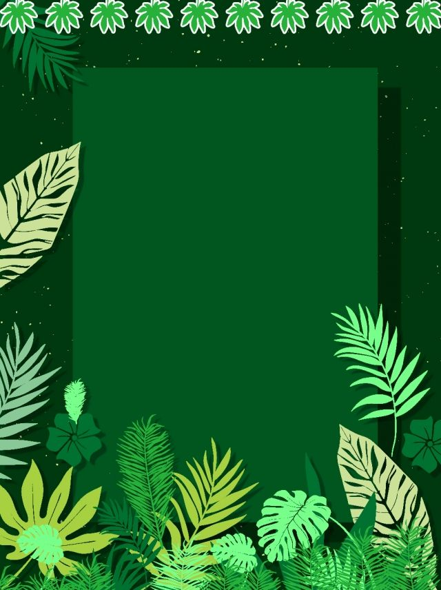 Green Small Plant Advertising Background Small Plants Cute Tumblr Wallpaper Plant Sketches