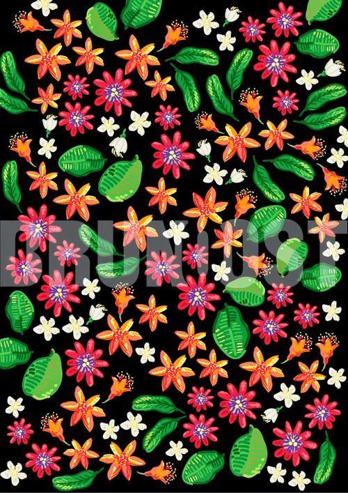 BRUNO OST | digital art | Flowers and Fruits over black canvas #digitalart #art # illustration #drawing #brunoost