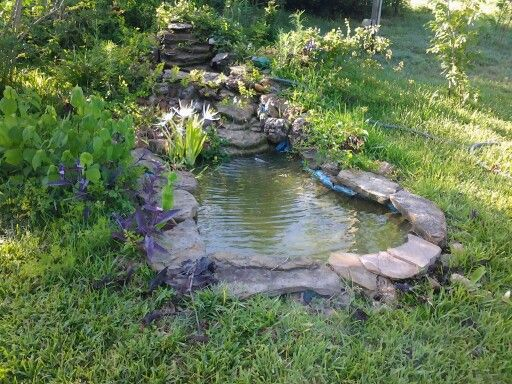 My small pond hubby and I dug years ago with preformed pond liners from hardware store ~ via Linda KWS