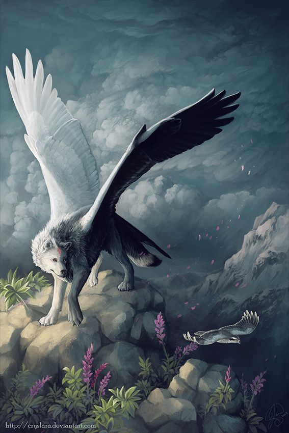 Winged Wolf Gallery - Warriors Of Myth Wiki - Wikia