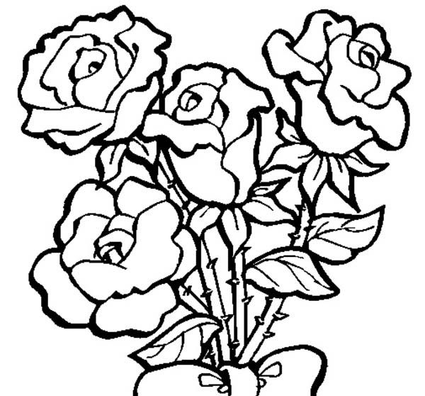 Yellow Rose Coloring Page