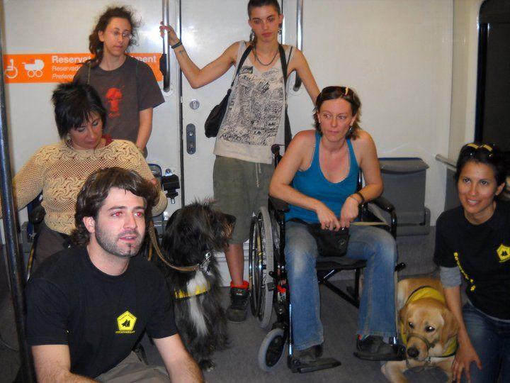 Curso de Adiestramiento de perros de asistencia con la Fundación Bocalan. Trabajo en el tren.