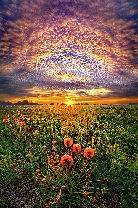 .... il Sole nasce? ... il Sole scende? .... un'altro giorno stà passando. ... oppure stà arrivando. ... che importa. .... tanto. .. il tempo scorre... senza sosta.... senza attendere alcuno.... senza darti il tempo di ripensarci o di rifletterci sù .... oggi ci sei ....ma domani? Chissà. ....  d.romans