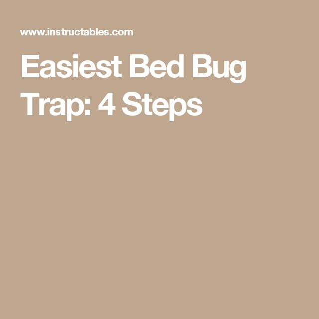 Easiest Bed Bug Trap: 4 Steps