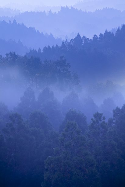 Kuju Highland, Oita, Japan 久住高原