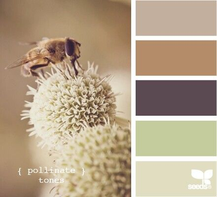 Like the brown with purples, a little more subdued accent colors