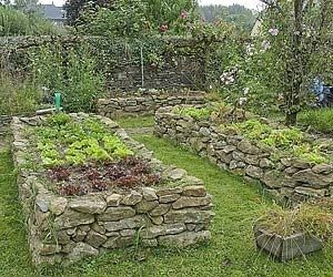 raised beds by colorcrazy