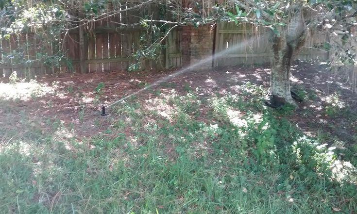 Sprinkler Repair Town N Country, American Property Maintenance has over 20 years experience repairing sprinkler systems 33615 Free Estimates Work Warrantied