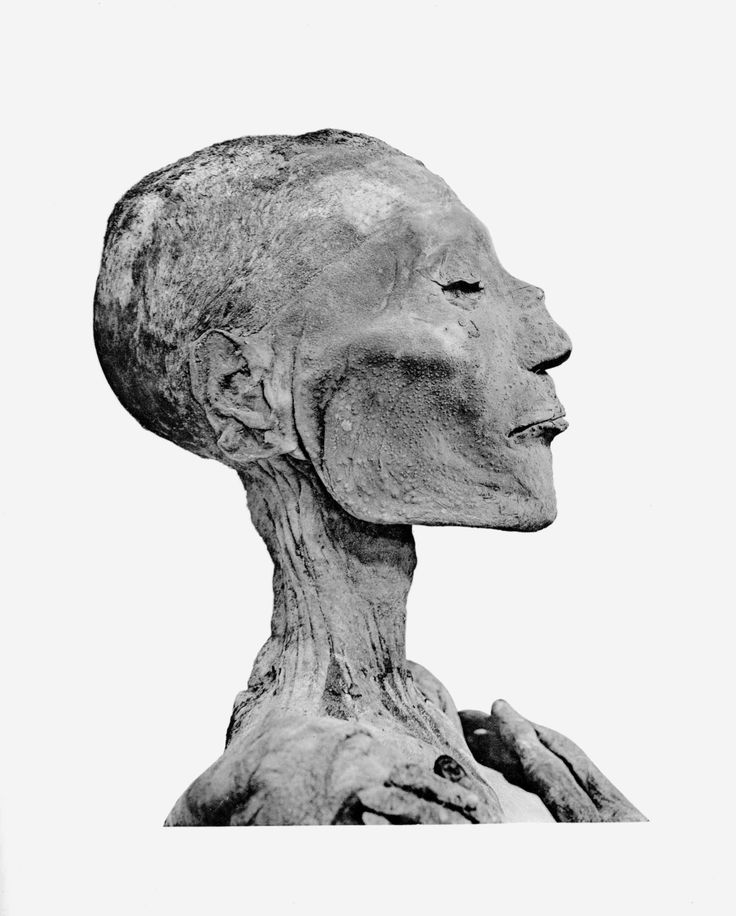 Mummy of Ramesses V, Cairo Museum, Egypt
