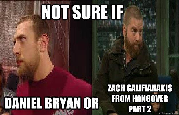daniel bryan meme | ... sure if Daniel Bryan or zach galifianakis from Hangover part 2 db meme