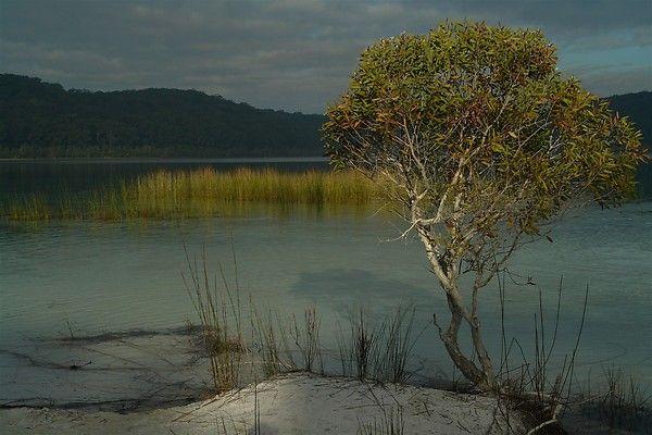 4WD Hire Fraser Island www.4wdhirerainbowbeach.com.au