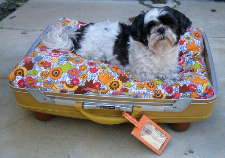Groovy Flower Power Large Retro Suitcase Pet Bed by Kaleidoscope of Colors on Etsy - 59.00: Suitca Dogs Beds, Retro Suitcases, Suitcases Dogs Beds, Vintage Suitca, Pet Beds, Groovi Suitcases, Suitcases Pet, Suitca Pet, Suitcase Dog Beds