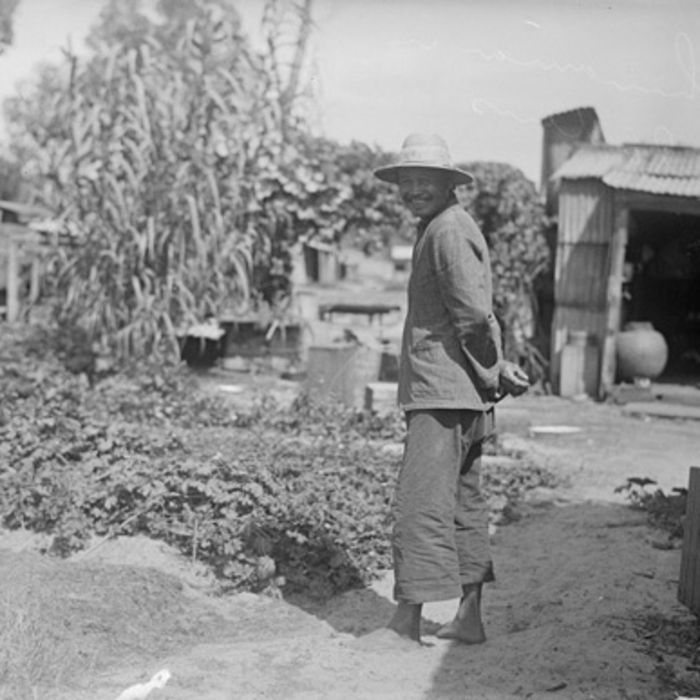 A Chinese market gardener in South Perth, 1928